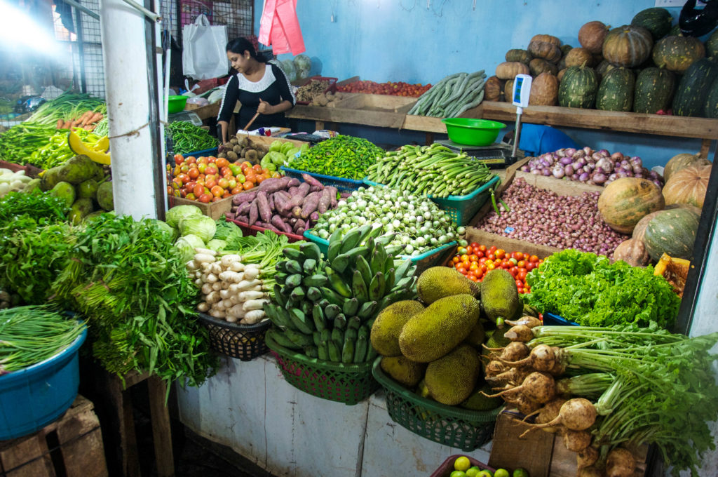 vegetable supply chain in sri lanka In madhya pradesh, fresh fruit and vegetable supply chains and their management is an area that has not been studied in detail drier parts of sri lanka.